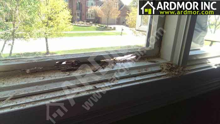 Pella-Window-Sash-Repair-Before